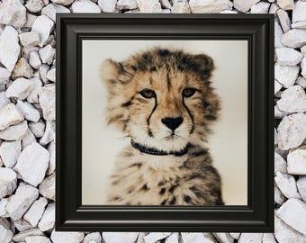 black antique picture frames. Black Picture Frame, Premium Antique Photo Vintage Decor  Custom Frames Available, 8x10 Frame 14x18 16x20 5x7 Black Antique Picture Frames R
