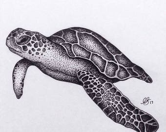 sea turtle drawing etsy