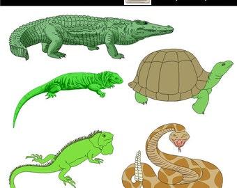 reptile clipart etsy rh etsy com reptile skin clipart reptile clipart public domain