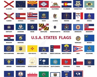 graphic regarding Printable State Flags titled Clear flags Etsy
