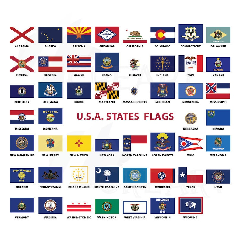 USA Capital and States flags collection for Print 50 US State image 0