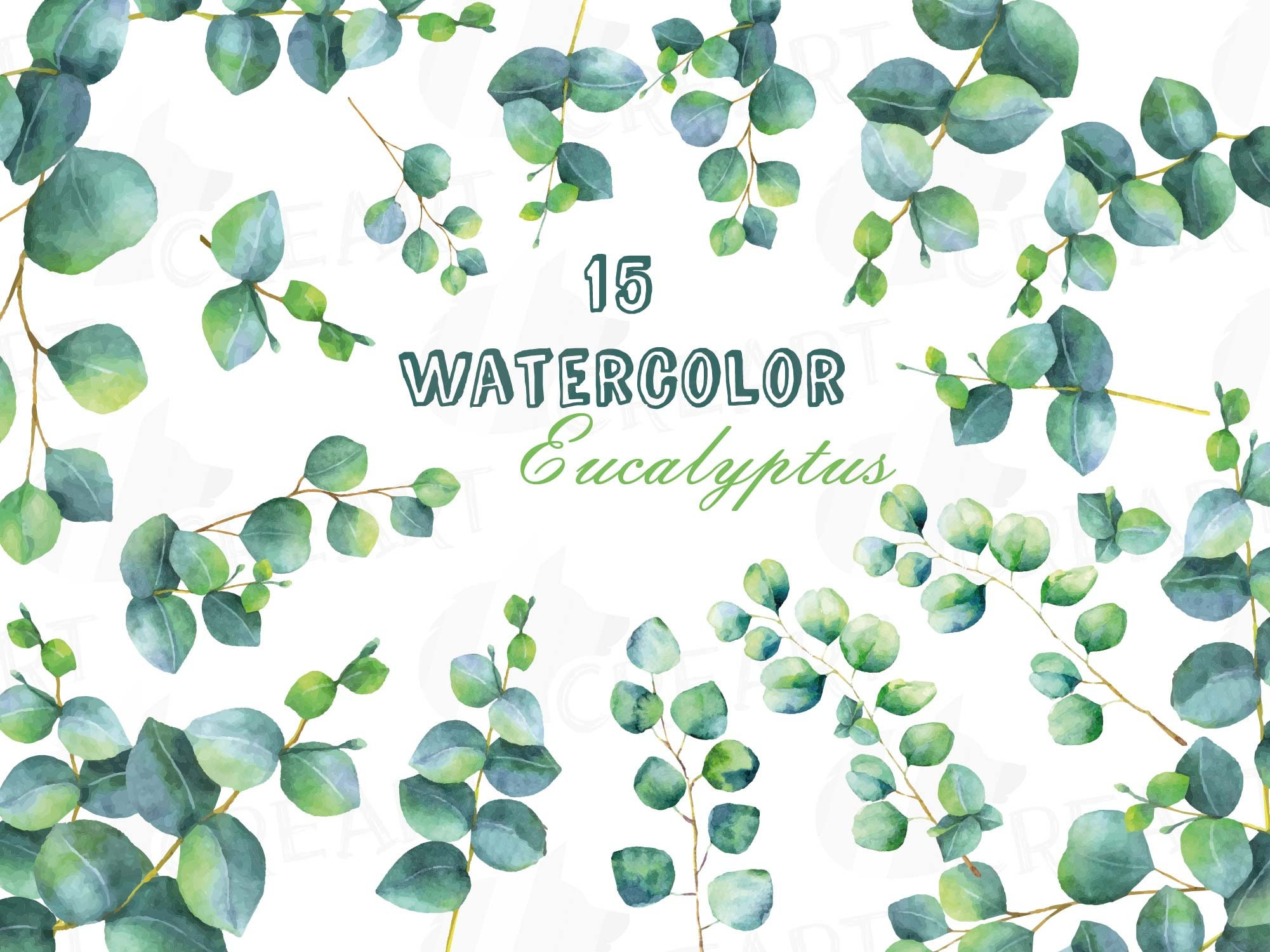 Eucalyptus leaves and branches watercolor wedding clip art. Eucalyptus  bridal shower design elements. PNG, jpg, svg, vector files included