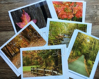 Fall Greeting Cards Set with Envelopes / Fall Foliage Photographs shot & processed by Carol Kutz / Photo Cards / Blank Greeting Card Set