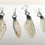 Insect Wing Earrings