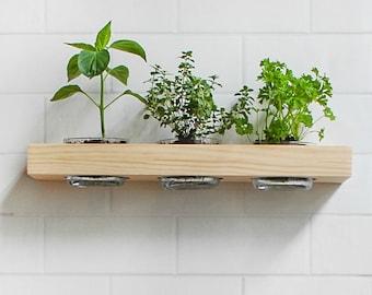 Floating Shelf Garden | Wall Mount Indoor Herb Garden | Succulent Display  Shelf | Floating Shelves | Hardware Included | Wall Art