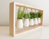 Indoor Herb Garden in Wooden Frame Wall Mount Planter Plant Gift Fall Decor Hanging Planter Pot for Indoor Plants