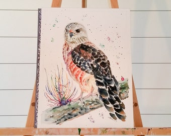 Hawk Painting, Original Watercolour, Red Shouldered Hawk, gallery wall, home decor, handmade, gift idea, handcrafted, Living room art