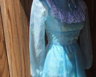 1970s Blue Floral Sheer Long Sleeve Dress