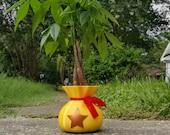 Animal Crossing Bell Money Bag LARGE Succulent Planter