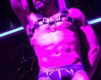 Chest harness, bulldog harness, harness, bdsm harness