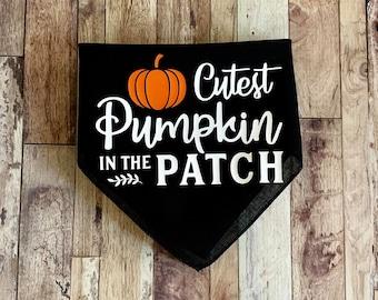 Cutest Pumpkin In The Patch Dog Bandana