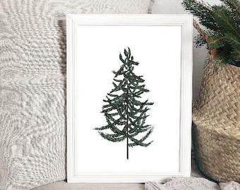 White Spruce * Watercolor Print* Hygge