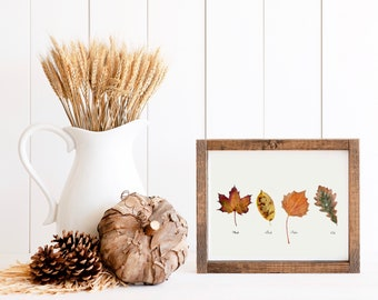 Autumn Leaf Variety *digital print* Fall Wall Art