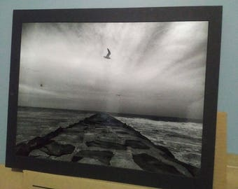 Stone, Saltwater, Surf and Seagulls - 16x20 photographic wall art print