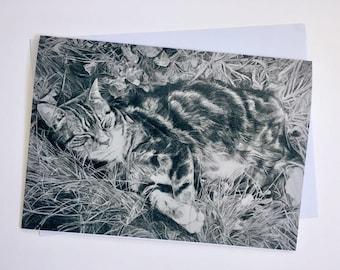 A5 Cat Card - Pencil Illustration