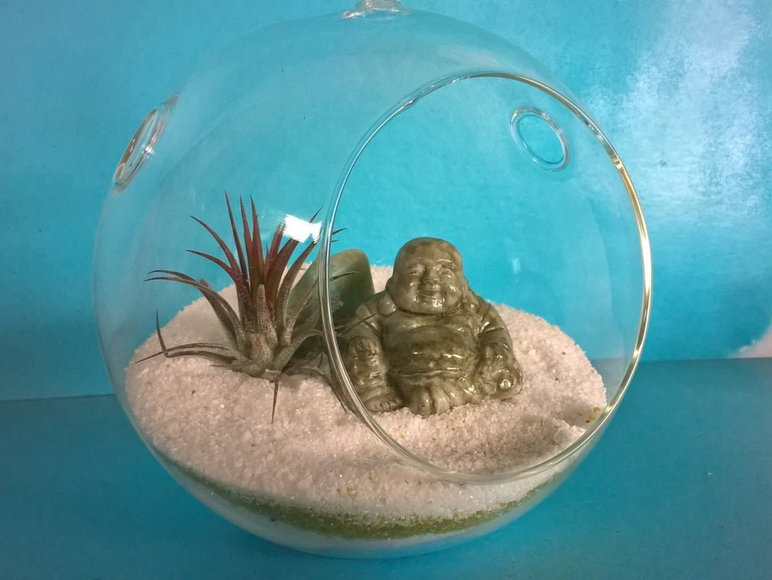 Hanging Air Plant Terrarium Buddha Home Decor Diy Terrarium