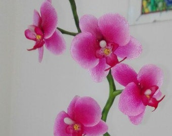 Polymer flower Phalaenopsis