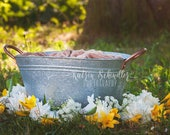 Gardening Flower Basket D...