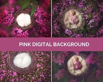 PINK Digital Photo Background Baby & Newborn Photography Purple Dark Mystic Set