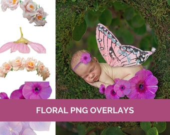 Floral PNG Overlays Baby & Newborn Photography Pink rose Flowers