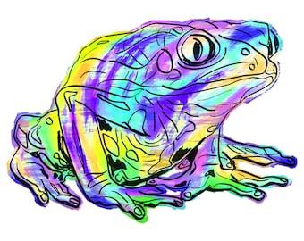 "Frog(2B) Giclée Print - Cavanata - 8"" X 10"" Frog Graphic Fine Art Print, Original Illustration, Animal Art"