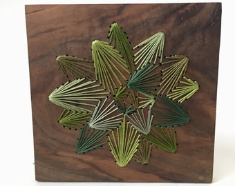 Natural Green Succulent Wall hanging