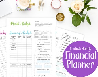 Financial Planner Printable - Debt Tracker -Budget Planner-  - Budgeting Sheets - Get out of Debt - Finance Organizer - Planner Insert