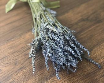 Dried French Lavender, Grosso Lavender, Purple Flowers, Fragrant Herbs, Wedding Bouquet, Home Decor, Floral Arrangement