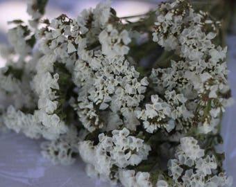 Statice flowers etsy white statice white wedding dried white flower bunch mightylinksfo