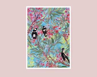 Print - Australian Magpie and Gum Blossom - A4 Watercolour Print - Giclée Art Print on Hahnemuhle Photo Rag