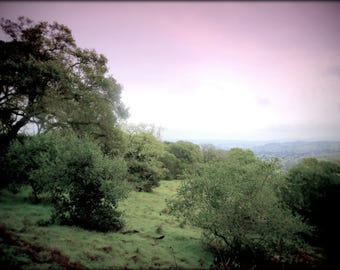 Vista from Helen Putnam