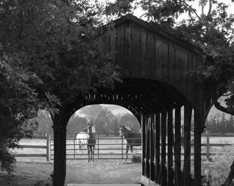 Covered Bridge and Horses