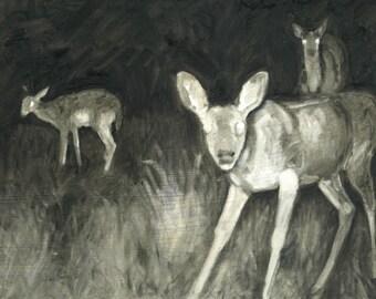 Deer at Night Print
