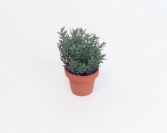 Miniature Dollhouse Flowers 1:12 Scale Rosemary Plant in Terra Cotta Pot