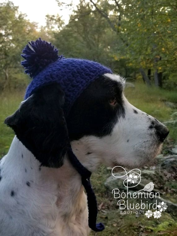 19c693c6000 Dog Beanie Dog Hat Dog Costume Photo Prop