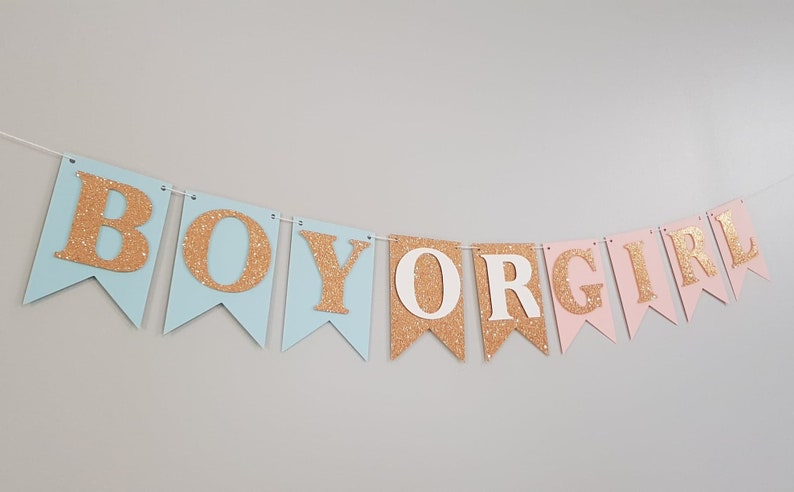 Gender Reveal Party Decorations Navy and Blush Gender Reveal Garland Gender Reveal Bunting Navy Blush and Silver Pink Blue Decorations