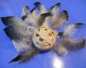 Ornamental Feathers- White with speckled and black tips