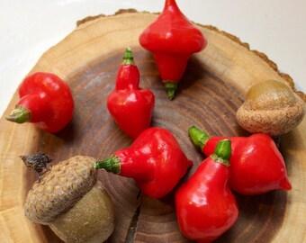 Brazilian Hot Pepper (RARE) - 'Piãozinho' - 15 seeds (heirloom)