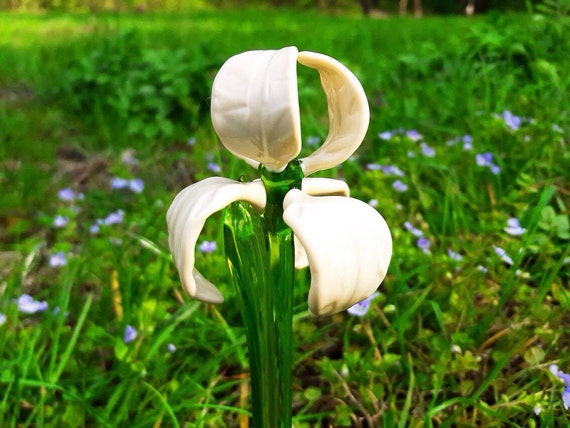 Blue Glass Iris with White Spots Flowers Figurine Blown Flower Iris Sculpture Art Glass Flower Murano Ornaments Garden Flower Miniatures Figure Toys Gifts