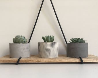 Concrete Planter | Includes Succulent