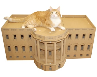 The White House Cardboard Cat House