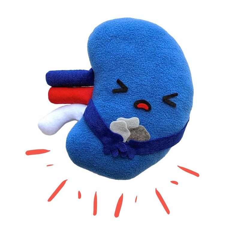 Kidney stone toy plushie kidney toy kidney toy gift kidney image 0