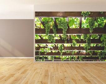 Wall Art Grape Vines Wallpaper HUGE Peel and Stick