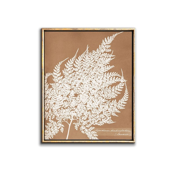 Shop Sepia Botanical Poster Printable Wall Art  Rustic Farmhouse from Etsy on Openhaus