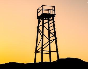Redhead Shark Tower - original photograph