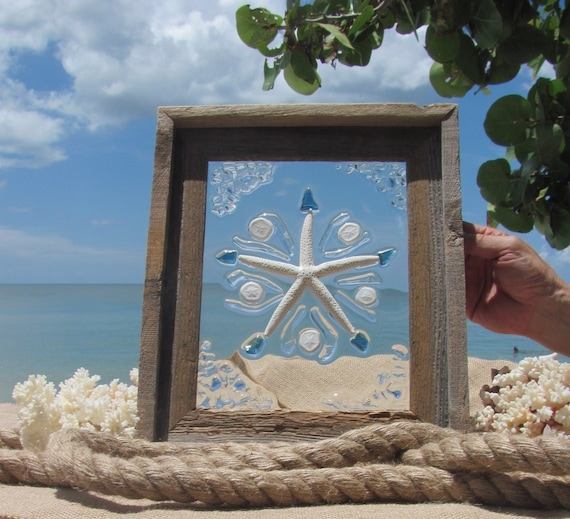 Beach Glass Sea Biscuits and Starfish #91