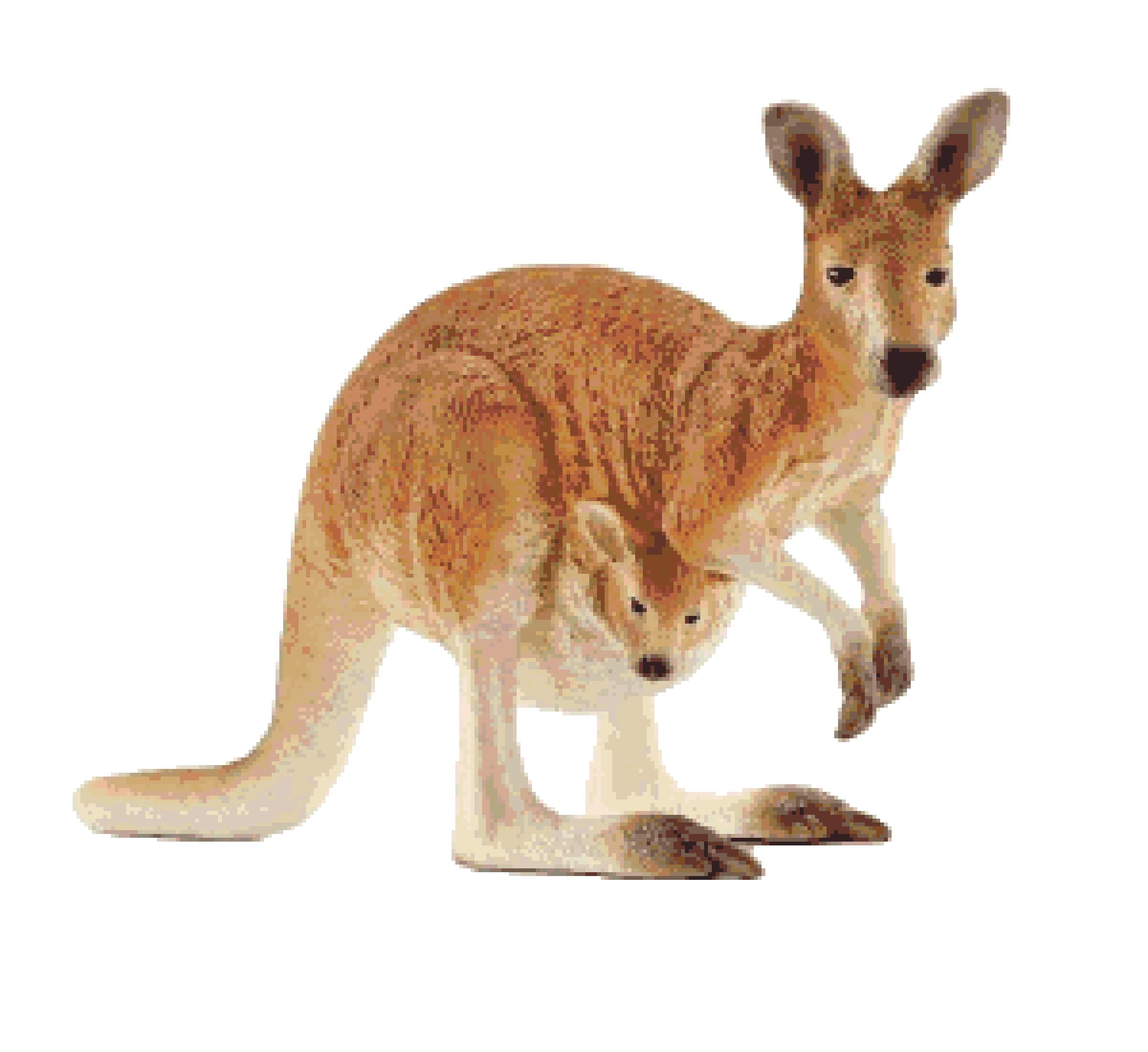Kangaroo and Joey Cross Stitch Pattern - Baby Kangaroo Counted Cross-Stitch  Pattern - Kangaroos Pixel Art (PDF Download Pattern)