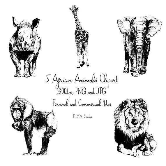 Afrikanische Tiere Clipart Schwarz Weiss Skizzen Elefant Etsy