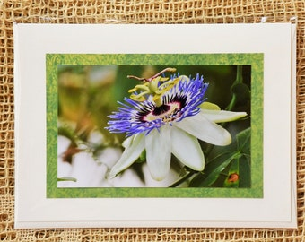Maypop | Passion Flower note card