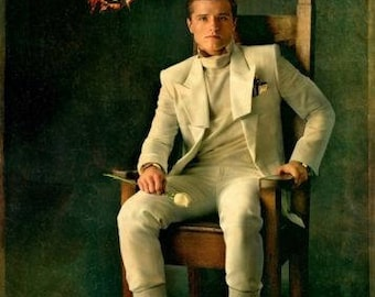 "The Hunger Games CATCHING FIRE ,11"" x 17"" poster, Movie Poster, Style B, Peeta"